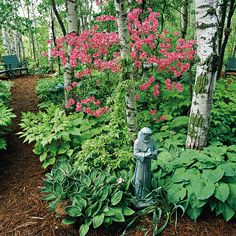 Azaleas have funnel shaped blossoms, while rhododendrons have trumpet-shaped flowers. For more flowering trees, click ehre: http://www.bhg.com/gardening/trees-shrubs-vines/trees/best-flowering-trees-shrubs/?socsrc=bhgpin041615rhododendronazalea&page=6