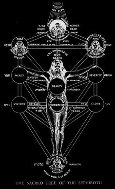 """The Sacred Tree of the Sephiroth.The Tree of Life is a physical picture of how our experience of life is represented. The Tree is the Blueprint of All Life. While the Tree appears in most depictions as 2-dimensional, it is in actuality a multi-dimensional """"universe"""" containing Trees of Life within Trees of Life, each intimately interconnected. It is the warp and weft that creates the woven Cloth of Life."""