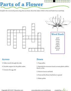 Worksheets: Life Science Crossword: Parts of a Flower