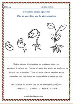 Μικροί κηπουροί εν τάξει Spring Activities, Activities For Kids, Life Cycles, Diy For Kids, Kindergarten, Preschool, Logo Design, Paper Crafts, Printables