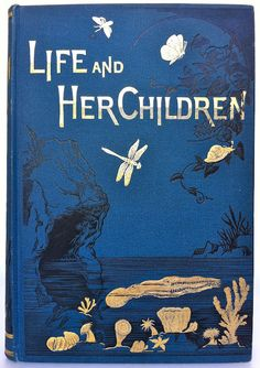 Life and Her Children: Glimpses of Animal Life from the Amoeba to the Insects, by Arabella B. Buckley, 1883