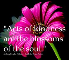 acts of kindness are the blossoms of the soul. -Anthony Douglas Williams