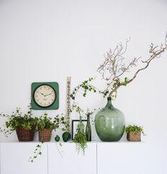 Inomhusinspiration! Fint med krukväxter