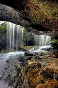 ✮ Brisbane Waters National Park, Gosford, Australia