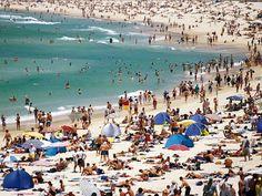 Enjoy the Christmas Holiday Bondi Beach, Sydney