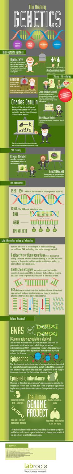 The History of Genetics | LabRoots | Infographics For the Scientific and Medical Community