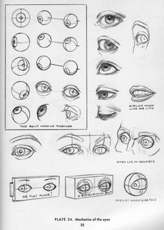 Eyes | #drawing #tutorial #training #creative #paper #head #pen #design #illustration #basics #eye < repinned by an #advertising agency from #Hamburg / #Germany - www.BlickeDeeler.de