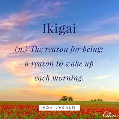 Ikigai: la razón de ser, el motivo de levantarse cada mañana