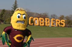 """Our fearless mascot Kernel Cobb was named to """"The 10 Strangest College Mascots,"""" by Her Campus and the Huffington Post this Spring. #concordia #cobber #kernelcobb"""