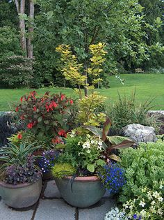 Patio container grouping