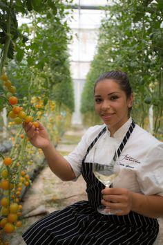 Jackson Family Wines Culinary Series, by Karisma. Lucia Gama Chef, Parteke by Kendall Jackson. Visiting El Dorado Royale Greenhouse.