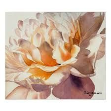 Google Image Result for http://rlv.zcache.co.uk/white_peony_watercolor_poster_print-r445b0a2c33d846778821be62bb90b17d_zph_8byvr_512.jpg