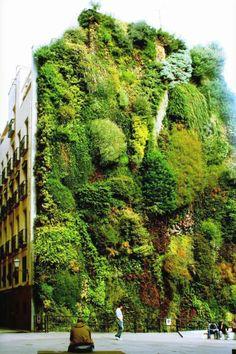 Extreme Garden Designs
