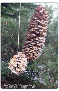 Vejledning til fuglefoder kogler How to make bird feed cones