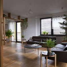 An Apartment for a Small Family in Kiev, Ukraine