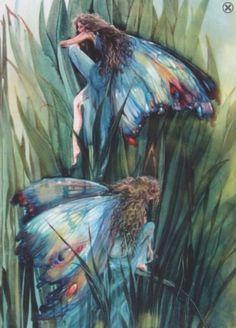 Fées papillon