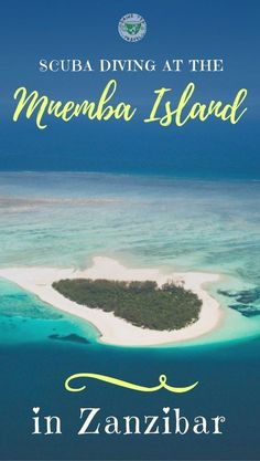 #place #scuba  Looking for a place to go scuba diving in Africa? Check out our scuba diving experience in Mnemba island in Zanzibar.