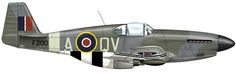 North American Mustang Mk.III, PZ190/QV•A, flown by Flg Off. F. Cooper of No. 19 Squadron, Ford, late summer 1944. Olive Drab ANA 613/Ocean Grey upper surfaces with Light Gray ANA 602 undersides; Night/white bands below wings and rear fuselage. Night spinner and serial, Sky codes; 'B' type roundels above wings  © Richard J. Caruana