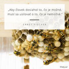 Aby človek dosiahol to, čo je možné, musí sa usilovať o to, čo je nemožné. - Ernst Fischer