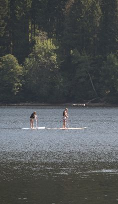 Stand Up Paddling - SUP - Stehpaddeln auf dem Titisee