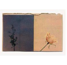 Inspiration - Katrien de Blauwer - Collage « Couleur pâle » - 2013.