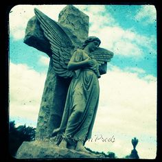 Angel statues - Flickr: Search