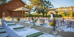 Regale Winery and Vineyards Weddings   Get Prices for South Bay Wedding Venues in Los Gatos, CA