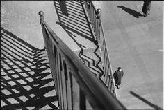 André Kertész, Sans titre, New-York, 1951 Négatif gélatino-bromure d'argent noir et blanc sur support souple Donation André Kertész, Ministère de la culture (France), Médiathèque de l'architecture et du patrimoine, diffusion restreinte