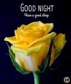 Have A Good Sleep, Nighty Night, Good Night Quotes, Day Wishes, Good Morning Images, Food, Sweet Dreams, Mornings, Beautiful Pictures