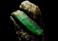 Emerald May