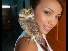 OMG I want a pet owl!!!!!