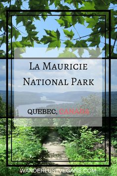 La Mauricie National Park, Quebec, CANADA