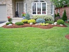 evergreen shrubs for landscaping | Swerving garden bed with evergreen shrubs, plants and accent rocks.