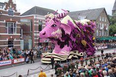 Water Buffalo - Flower Parade Corso Zunder