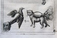 Experts studying a manual on artillery and siege warfare from around 1530 made a rather startling discovery recently. | 16th Century Military Manual Appears To Show Cats Strapped With Jet Packs