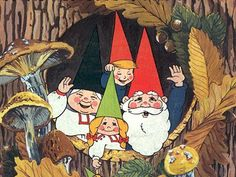 David the Gnome & family.  The reason I am a nurse today.   This was my first memory of wanting to help heal people (or foxes small forest creatures, as it were)