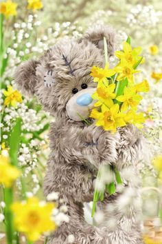Miss you so much Dad💛 Teddy Bear Quotes, My Teddy Bear, Cute Teddy Bears, Tatty Teddy, Nici Teddy, Cute Images, Cute Pictures, Teddy Beer, Teddy Bear Pictures