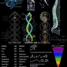 Cymatics: Frequencies Sound + Vibration = Secret Geometry