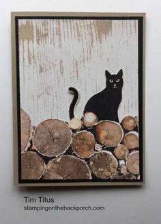 papier de textures de bois fait un chat derrière la carte de woodpile pour n'importe quelle occasion