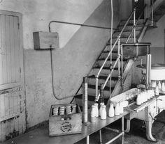 Machinery at Wawa Dairy Farms :Bottle filler