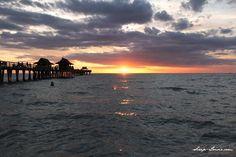 1000 Images About Naples Florida On Pinterest Naples