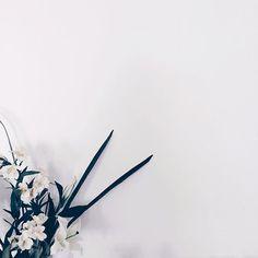 #photography #instapic #potd #vsco #vscocam #minimalist #whitefeed #fotografia #aesthetic #decor #art #flowers #white #nature #decoracao - Architecture and Home Decor - Bedroom - Bathroom - Kitchen And Living Room Interior Design Decorating Ideas - #architecture #design #interiordesign #diy #homedesign #architect #architectural #homedecor #realestate #contemporaryart #inspiration #creative #decor #decoration