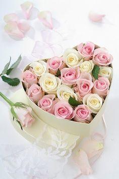 Box of Roses from my Honey.