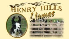 Image result for llamas for sale Henry Hill, Llama Arts, Llamas, Art Logo, Farm Animals, Goats, Movie Posters, Image, Film Poster