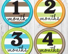Monthly Baby Stickers Milestone Girl Elephant Baby Stickers   Etsy Baby Month Stickers, Monthly Baby, Elephant Baby, Just Amazing, Baby Month By Month, Infant, Fun, Etsy, Baby