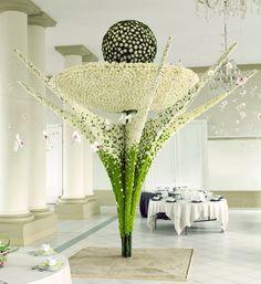 bloom 2012 - Belgian florist Steffen Adriaenssens