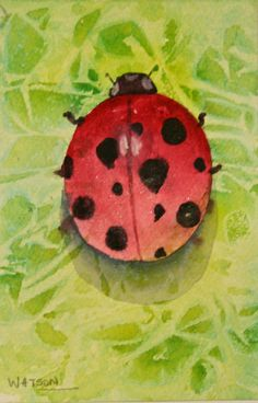 Deb Watson Ladybug Watercolor Painting/Card This was a class demo for bugs and I couldn't resist adding an abstract background with saran wrap.