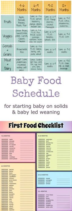 Baby Food Schedule for starting baby on solids & baby led weaning. Baby feeding schedule, baby feeding chart, introducing baby food and more BLW - baby led weaning - info