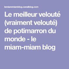 Le meilleur velouté (vraiment velouté) de potimarron du monde - le miam-miam blog