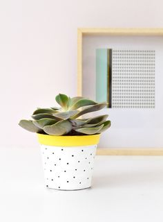DIY Painted flower pot by passionshake / happy #urbanjunglebloggers ! :) / dotted pot / easy diy home decor / paint craft / succulent / plants at home